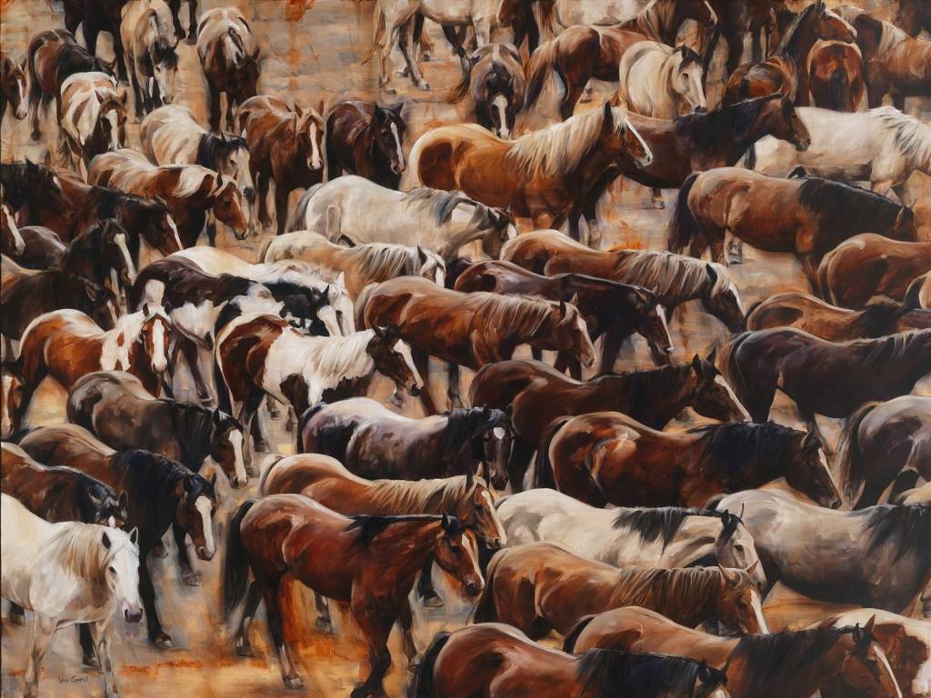 Paul Van Ginkel Exhibition
